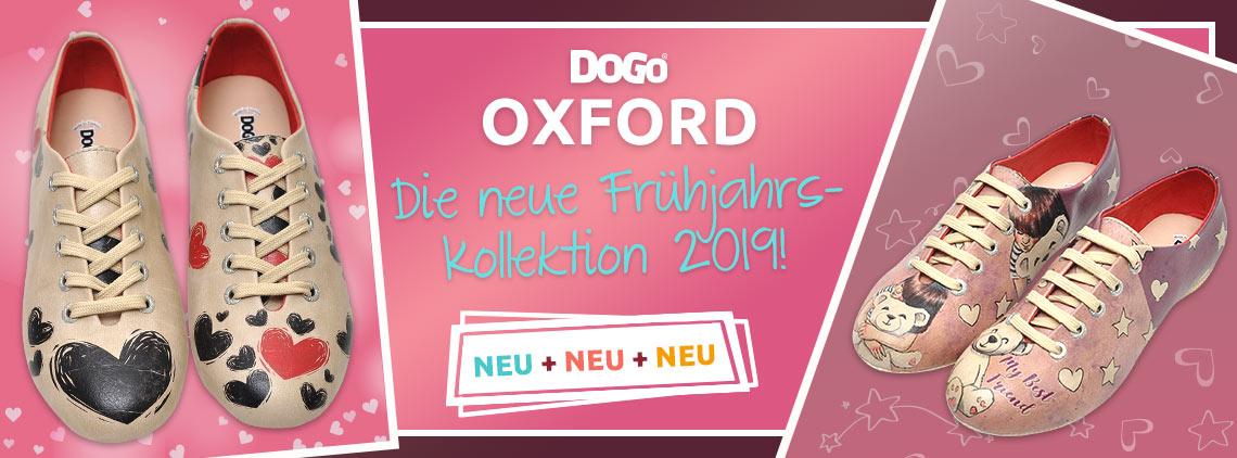 DOGO Oxford 2019